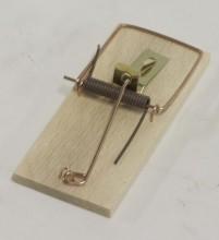 Past na myši 801/D standart